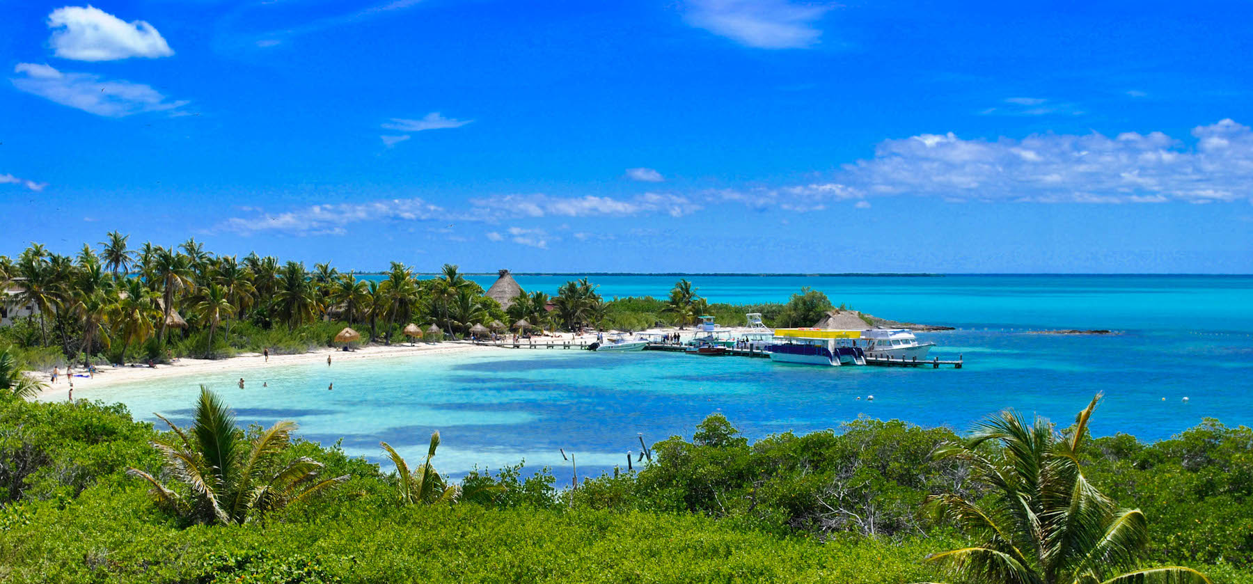 Paradise Islands (Isla Contoy _ Isla Mujeres) (28) copy